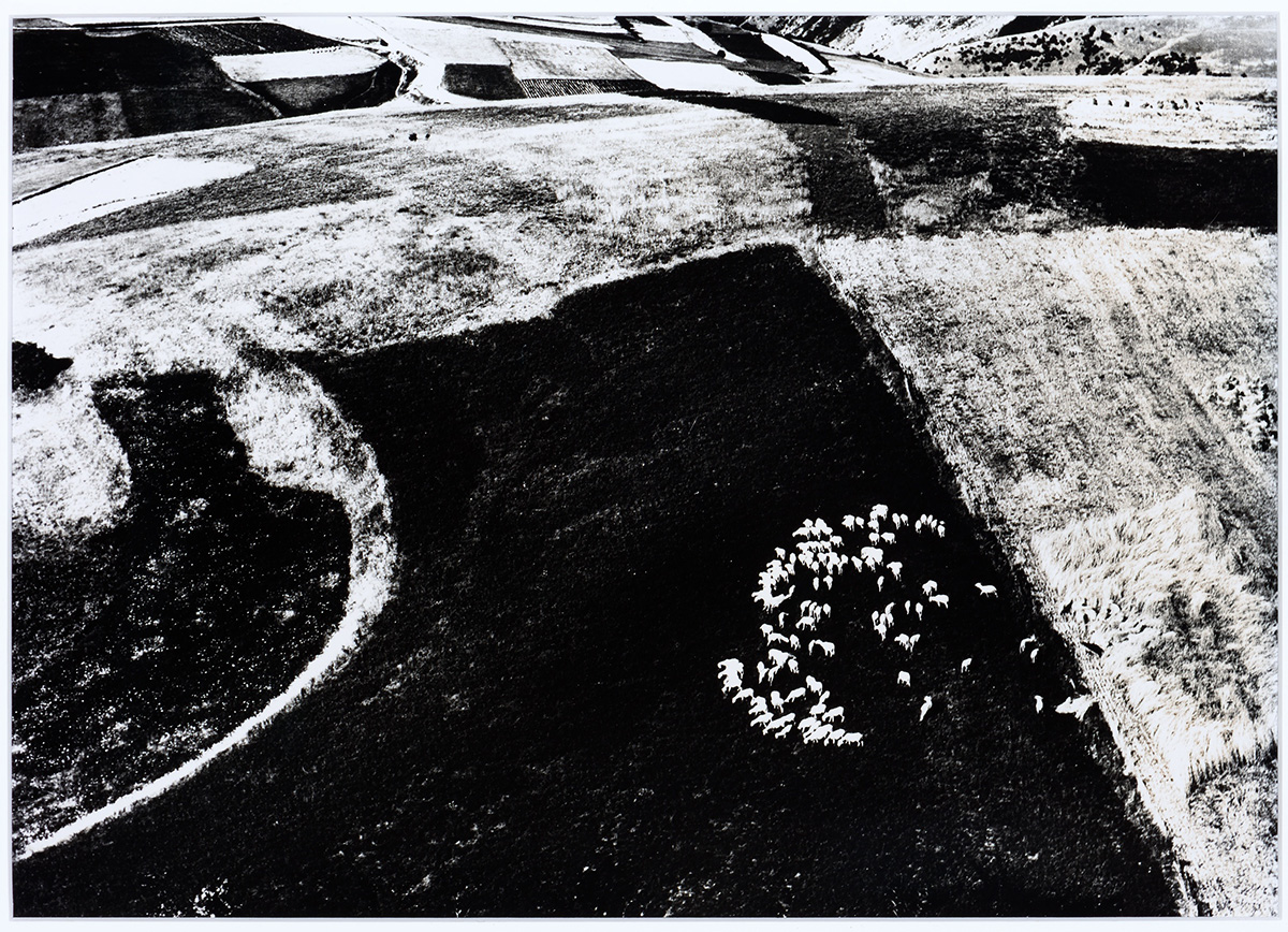 Mario Giacomelli, Untitled (Landscape) from the series Paesaggi, 1964-1974. Gelatin silver print, 18 x 211/2 inches (45.7 x 54.6 cm). Gift of Ippy and Neil Patterson in honor of Patricia Leighten, 2013.2.1. © Archivio Mario Giacomelli Sassoferrato.